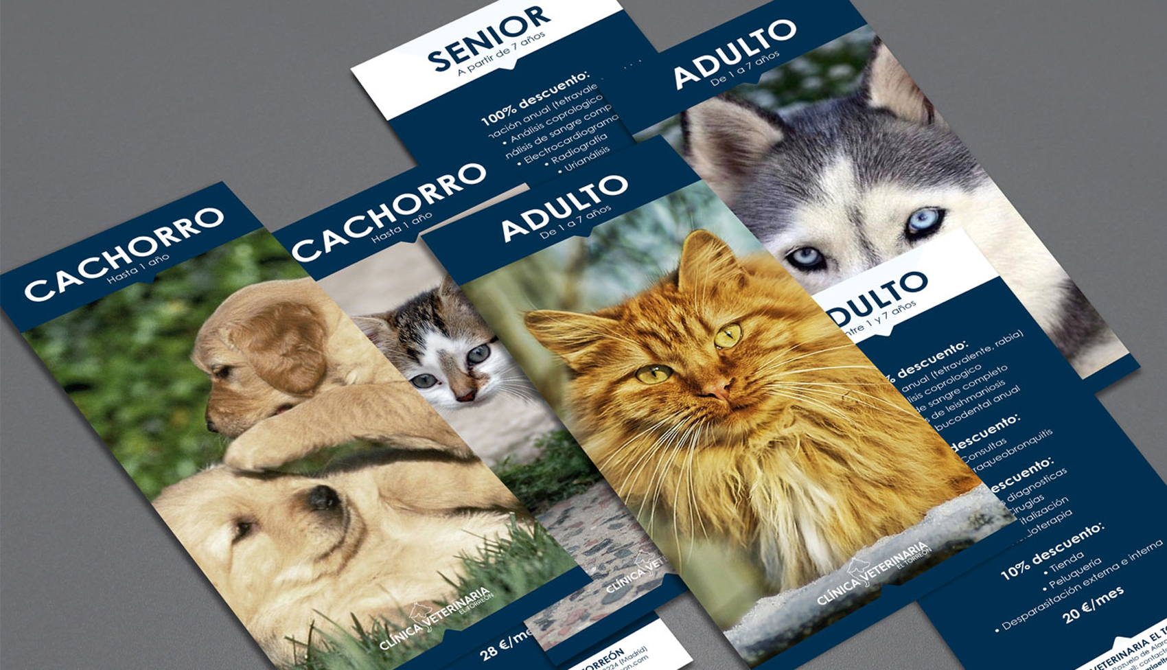 Clinica Veterinaria El Torreon